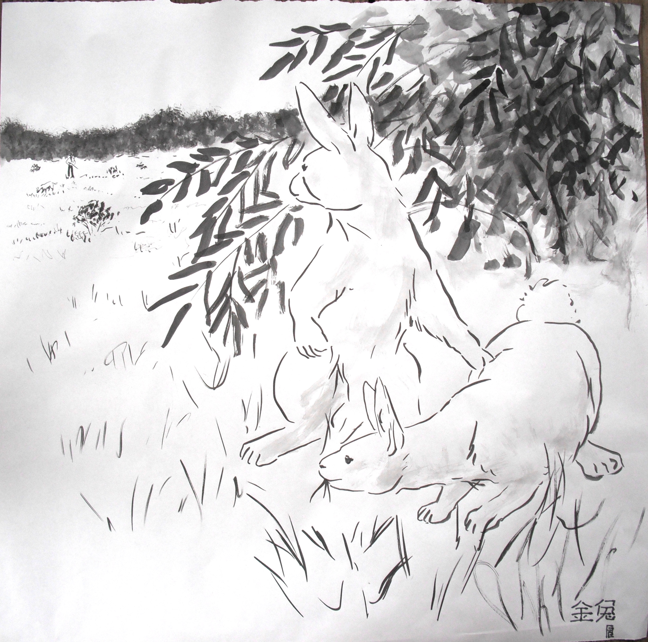 image of rabbits being hunted
