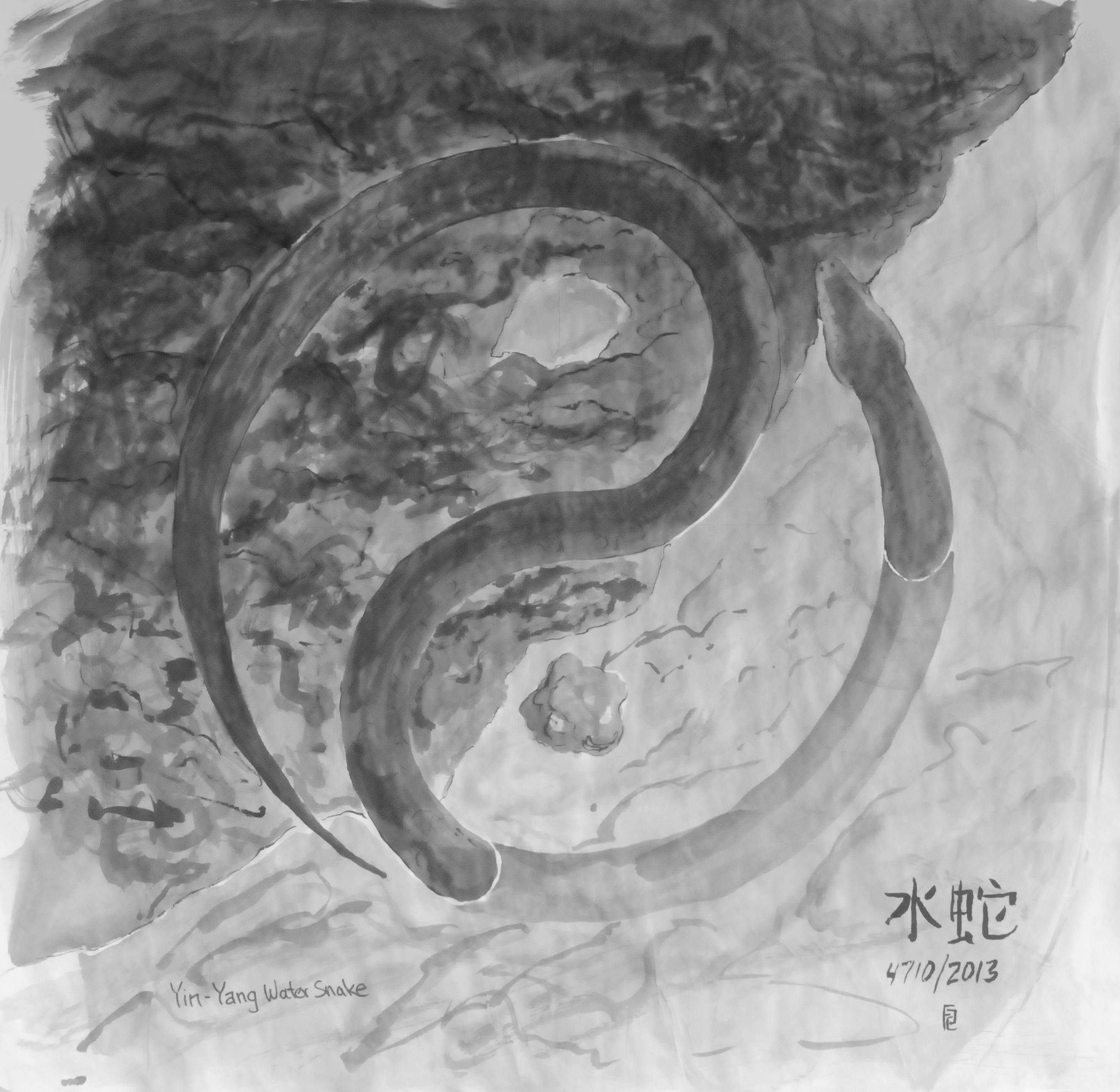 image of stylized yin yang symbol formed by a snake