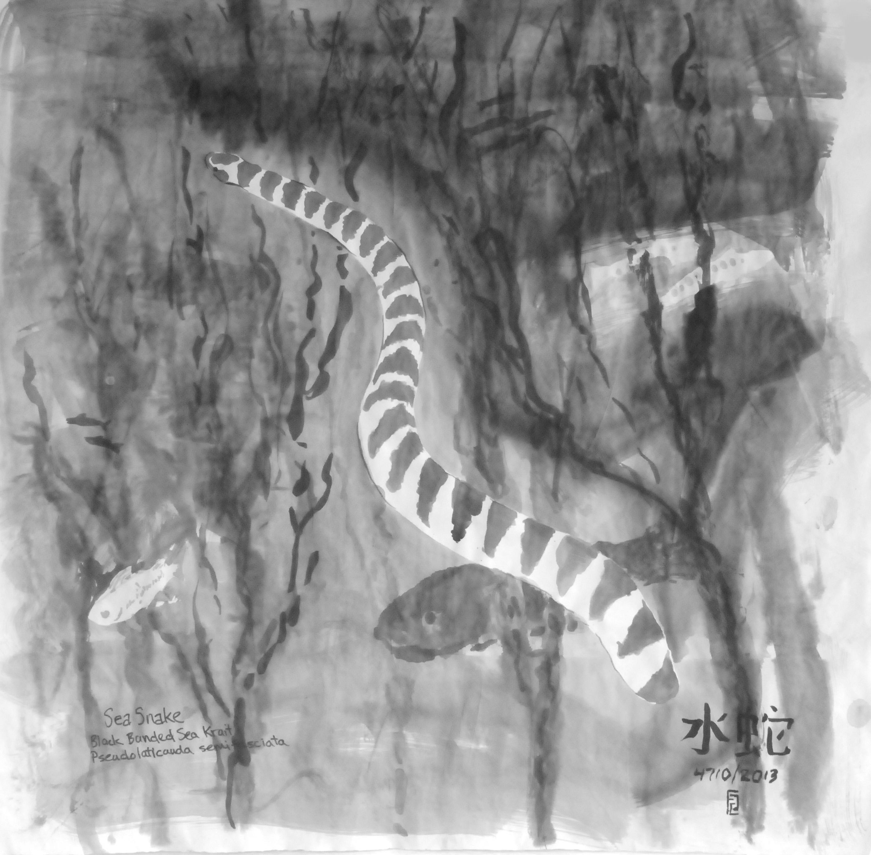 image of a sea snake painting